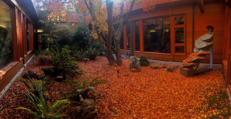 atrium in the fall7